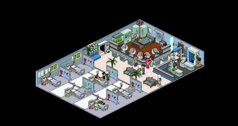 Hôpital extension Captur19