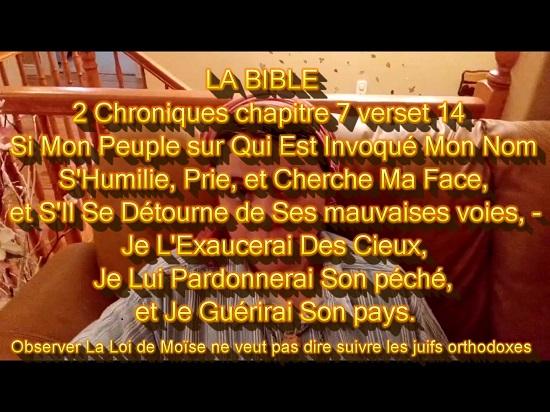 QUELQUES IMAGES 2_chro10
