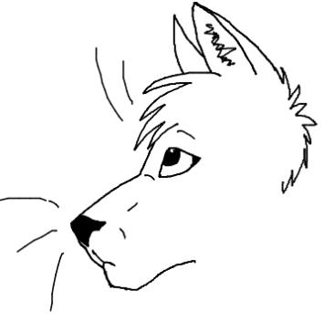 White's Cute Critters Shop <3 ( Under constuction) Cat_dr10