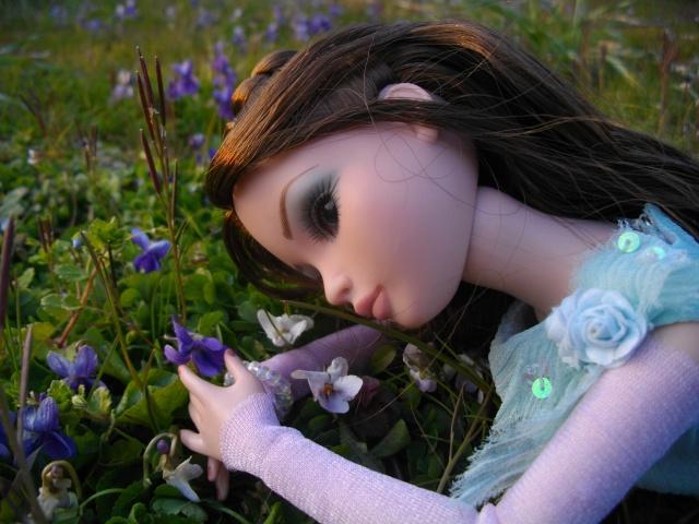 THEME DU MOIS DE MARS 2013 : le printemps, le renouveau, les balades dans la nature Imgp8516