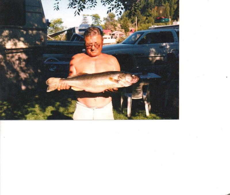 trout.. - Page 2 Lake_r22
