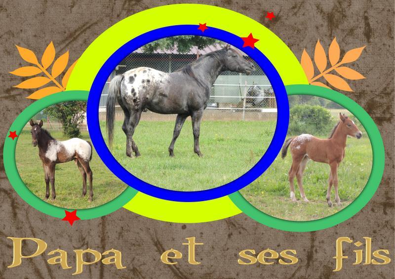 Mes petits montages photo!! - Page 2 Papa_e10