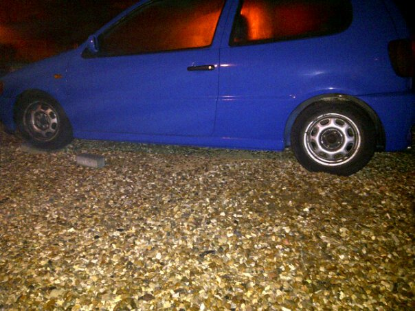 Project blue polo 2210