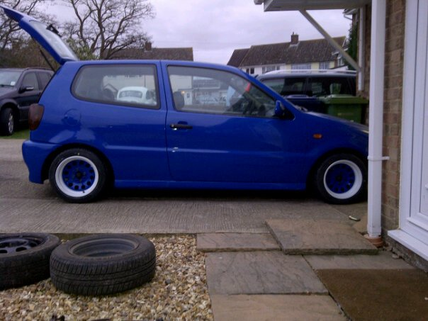 Project blue polo 3110
