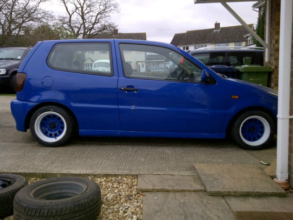 Project blue polo 3210