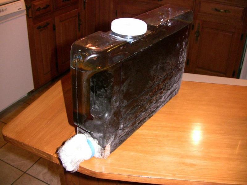 Vin de glace de mure, méthode d'extraction du jus ? Cryo10
