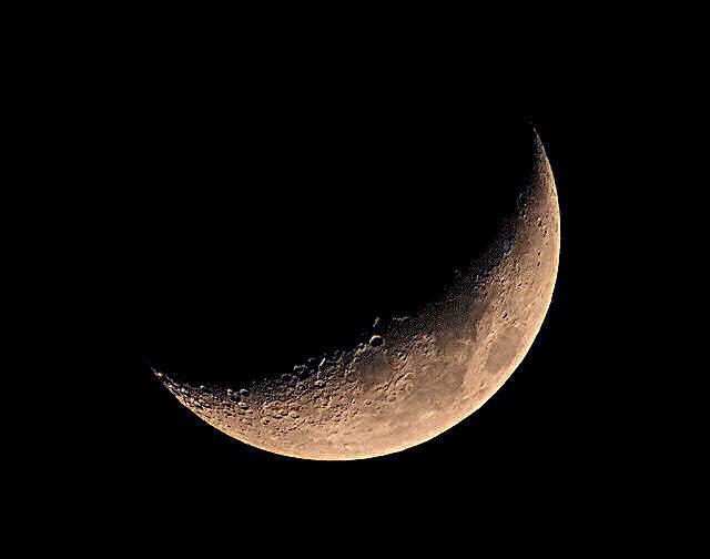 lune fraichement développée P2085811