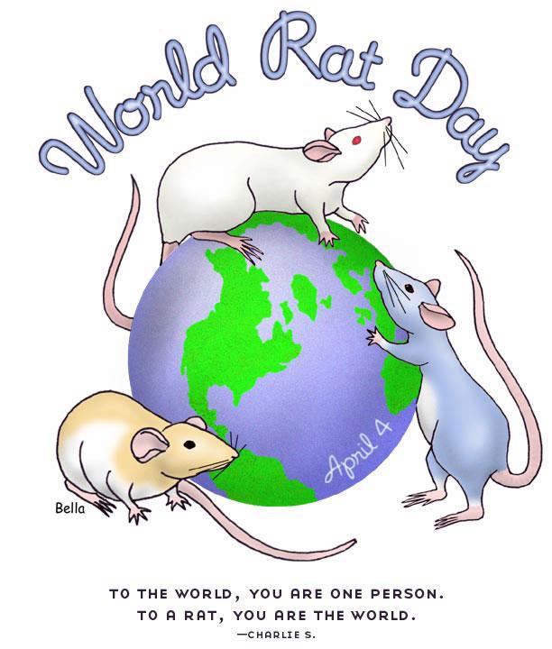 World Rat Day Wrd-2010