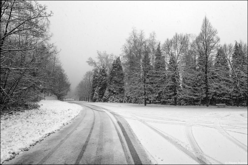 domenica nevosa e due foto paesaggio Bianco/Nero Dsc_1710