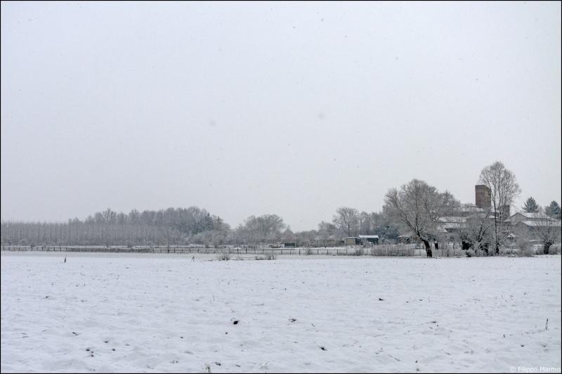 domenica nevosa e due foto paesaggio Bianco/Nero Dsc_1712