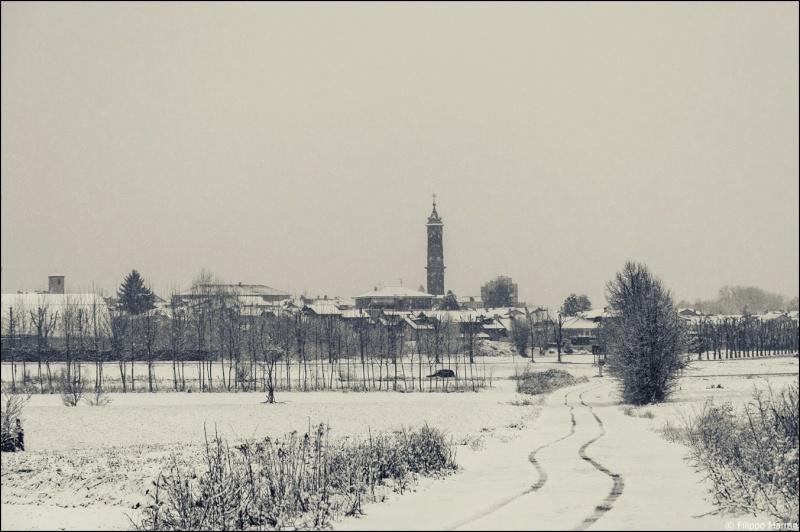 domenica nevosa e due foto paesaggio Bianco/Nero Dsc_1713