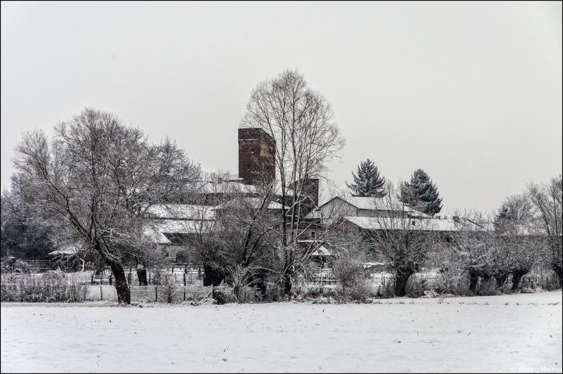 domenica nevosa e due foto paesaggio Bianco/Nero Dsc_1715