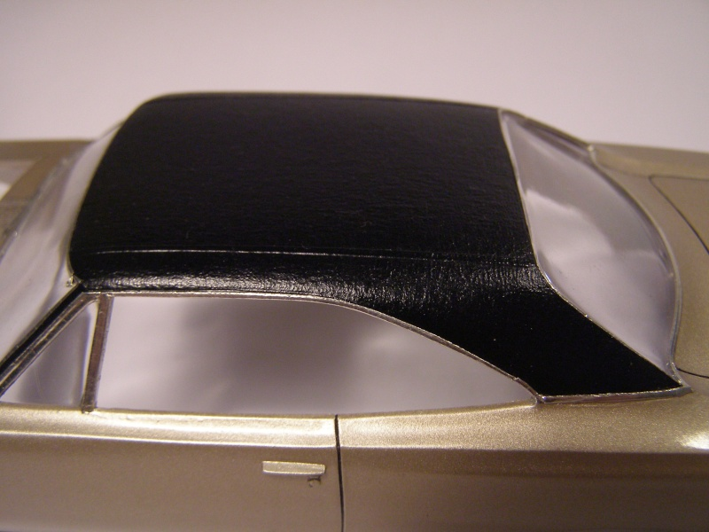 toit vinyle P1180310