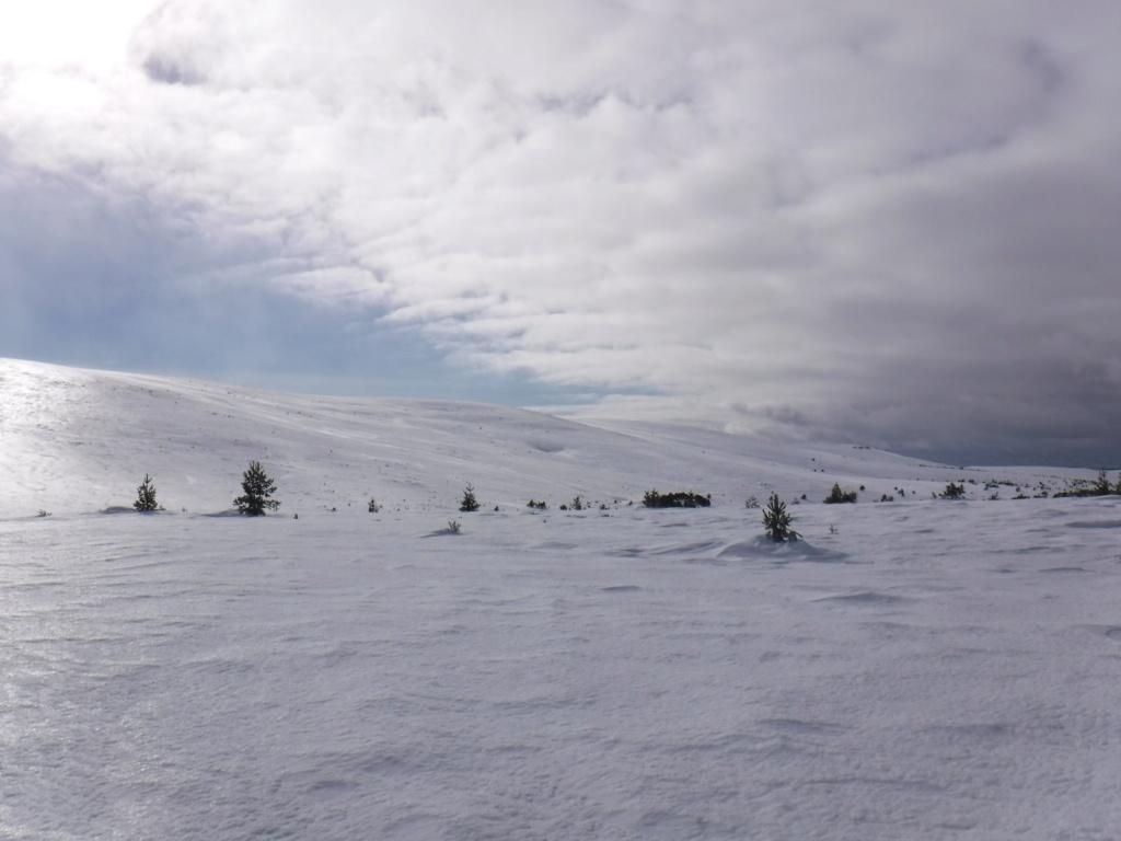 Roadtrip massif central 2019 Dscf3111