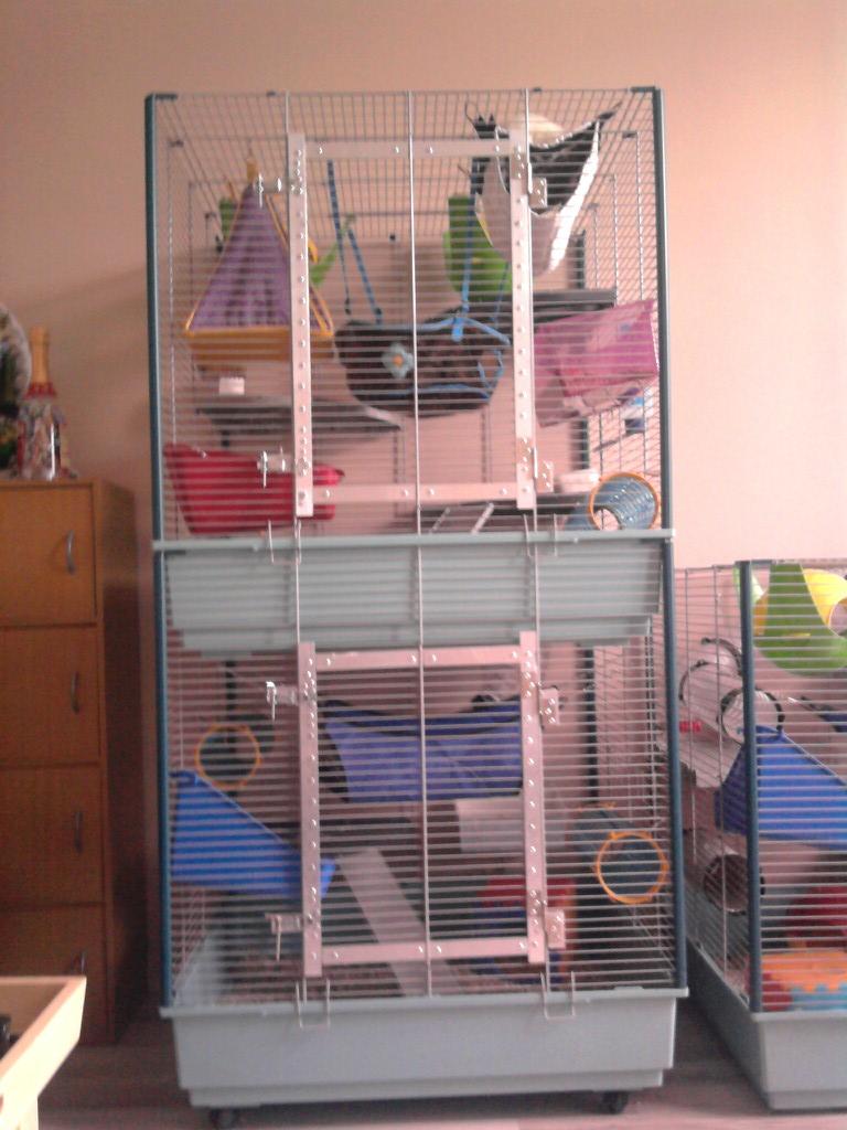 Photos de vos cages Tower110