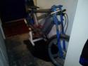 Résurrection de mon Ciao Racing Img_2093