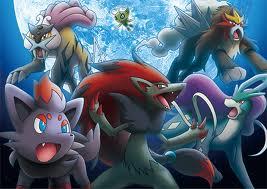 The Pokemon Experience