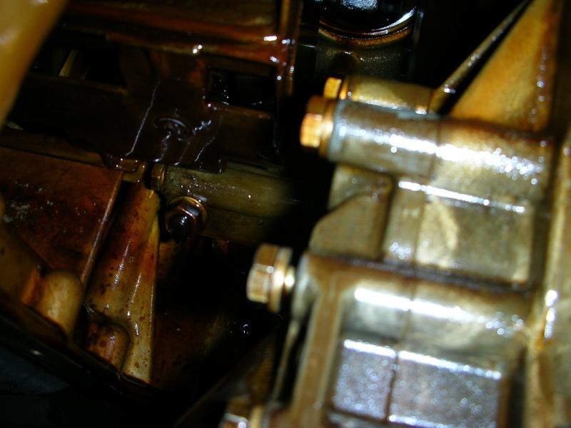 vidange moteur avec changement du joint de carter  Dscn8850