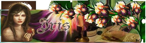Les bannieres faites Iris0311