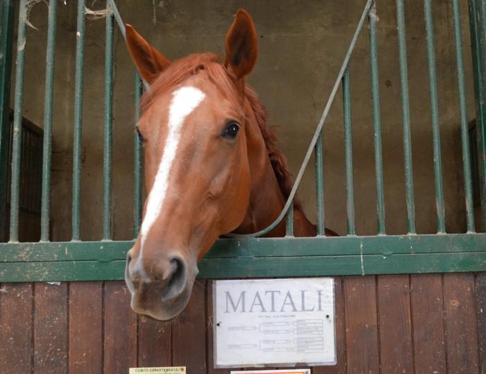 EDB Matali11