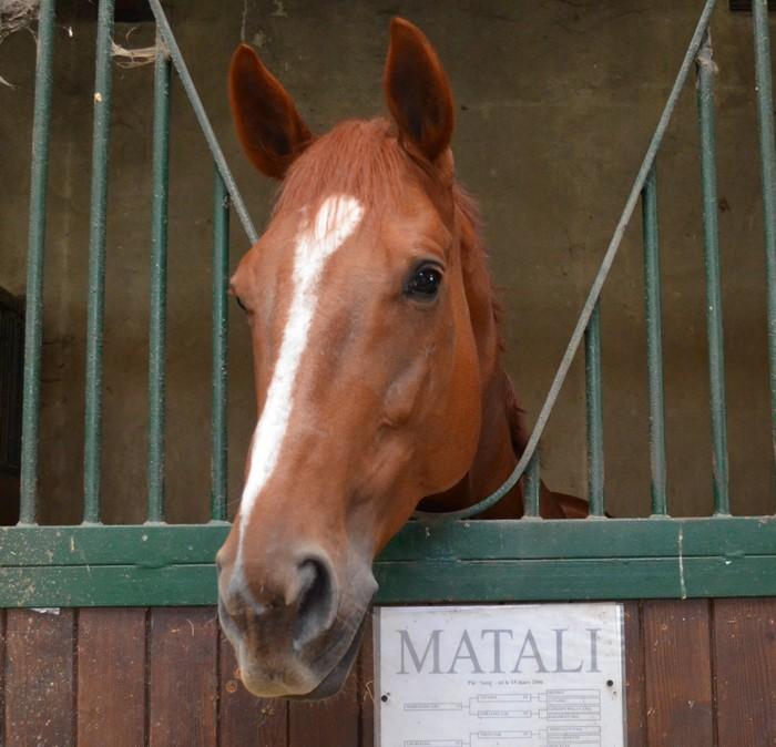 EDB Matali12