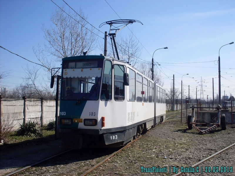 2013 - Martie Sdc12108