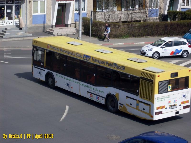 Sibiu - Hermannstadt Sdc12625