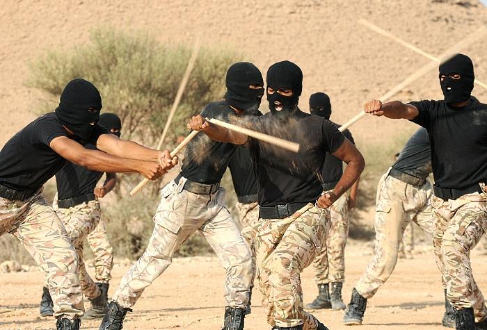 Royal Saudi Land Forces Image10