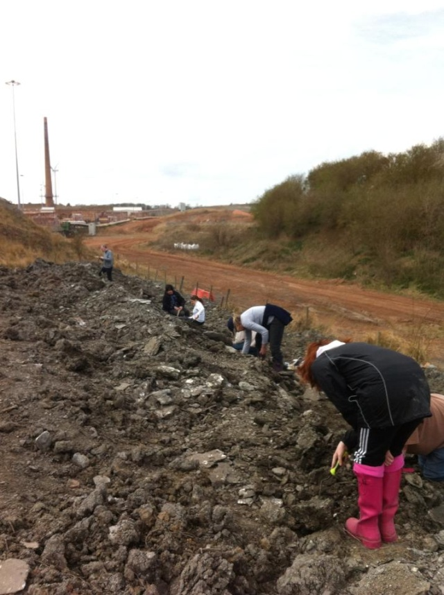 Kings Dyke fossil hunt (Re-arranged from March) finds and pictures 54903510