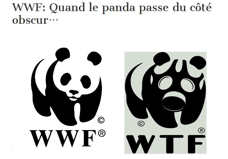 I love panda  Obscur10