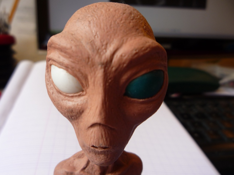 Buste extraterrestre P1030310