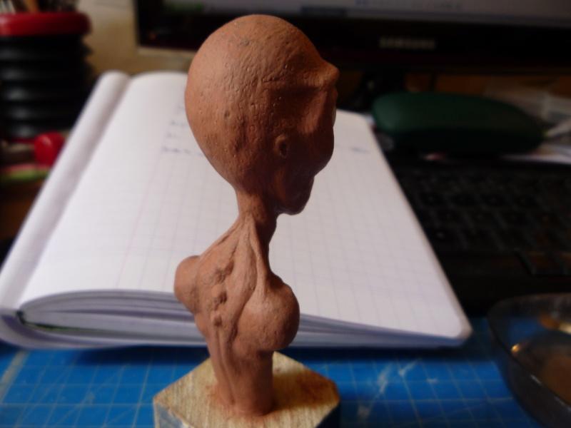 Buste extraterrestre P1030311