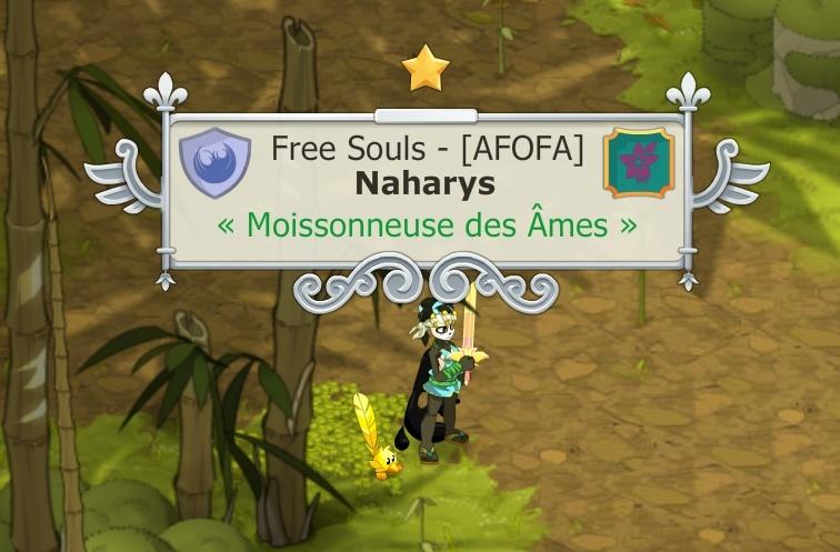 Naharys, Pandawa Air/Multi niveau 200 [le 18/08/2014] - Page 2 Dofus_13