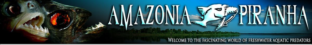 amazonia-piranha