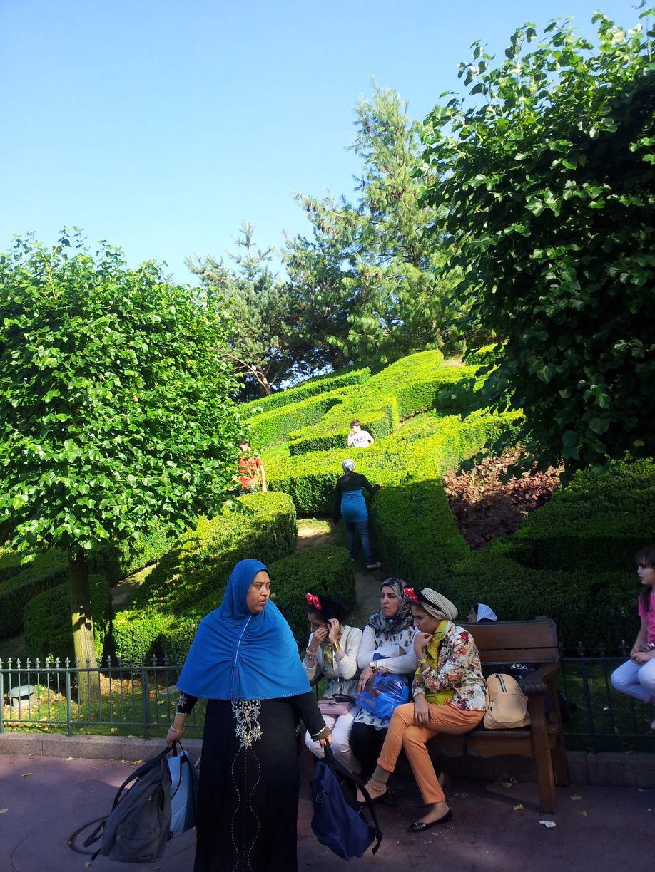 Les pelouses autour de Central Plaza 11724410
