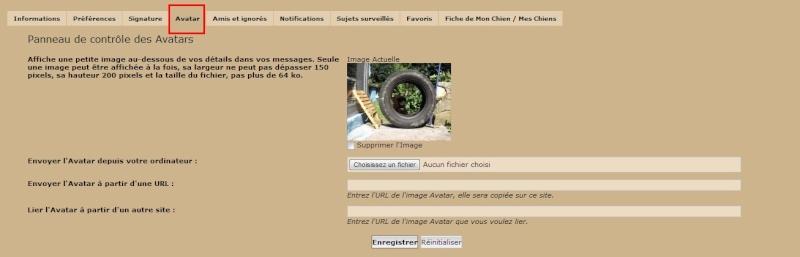 Changer Son Avatar / Sa Signature. Sans_t14