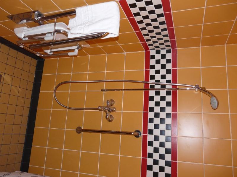 [Hôtel Disney] Disney's Hotel Santa Fe - Page 5 P1120924