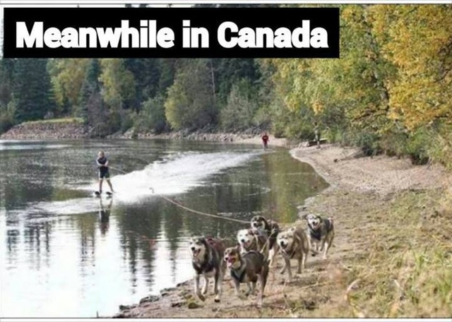 Meanwhile, back in Canada Water_10
