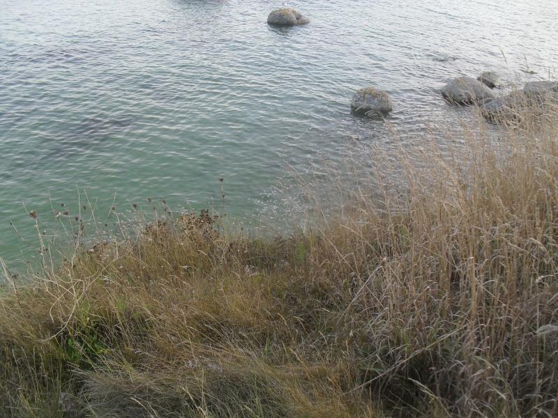 grande marée plus grand jour 105 00512
