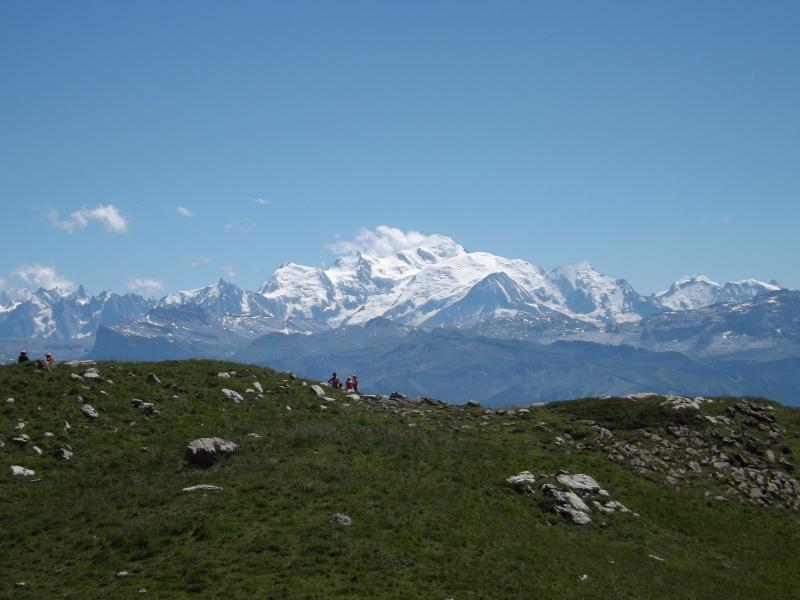 Randonnée dans les alpages... Dscf3016