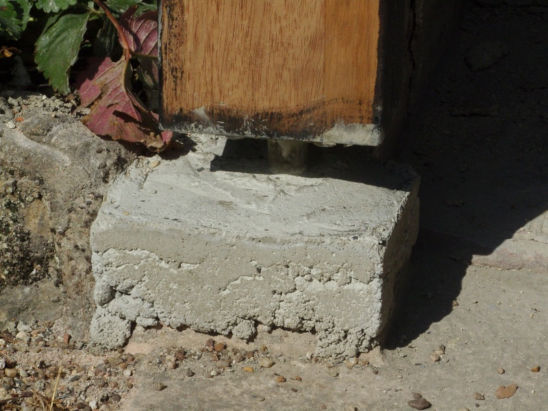 [Réalisation] Une porte/volet à clefs pour mon abri de jardin - Page 2 Snb13221