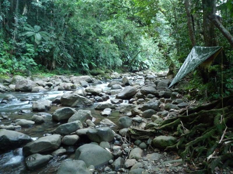 survie jungle et mer dans les caraibes ... Stage_19