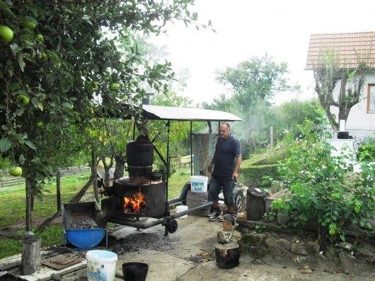 U Višnjiku se peće rakija Peaenj11