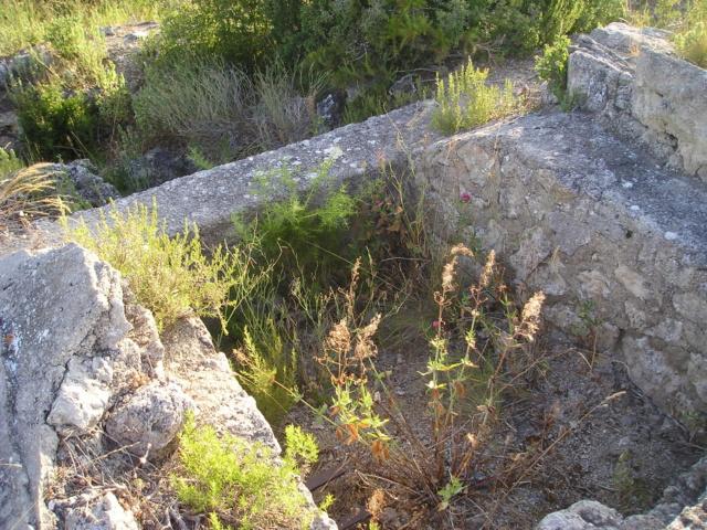 Bunkers sur Septèmes les vallons (13) P1010092