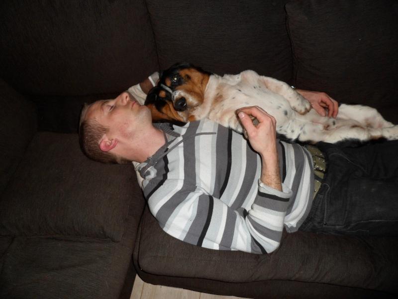 mon compagnon canin et  felidé Sam_0310