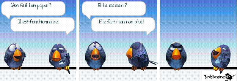 Les Birds Dessinés Captur21
