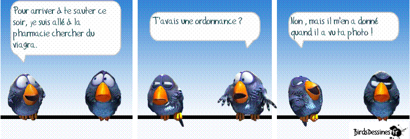 Les Birds Dessinés Captur22
