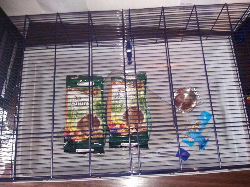 VEND Cage Ruffy 2 [44] Photo214
