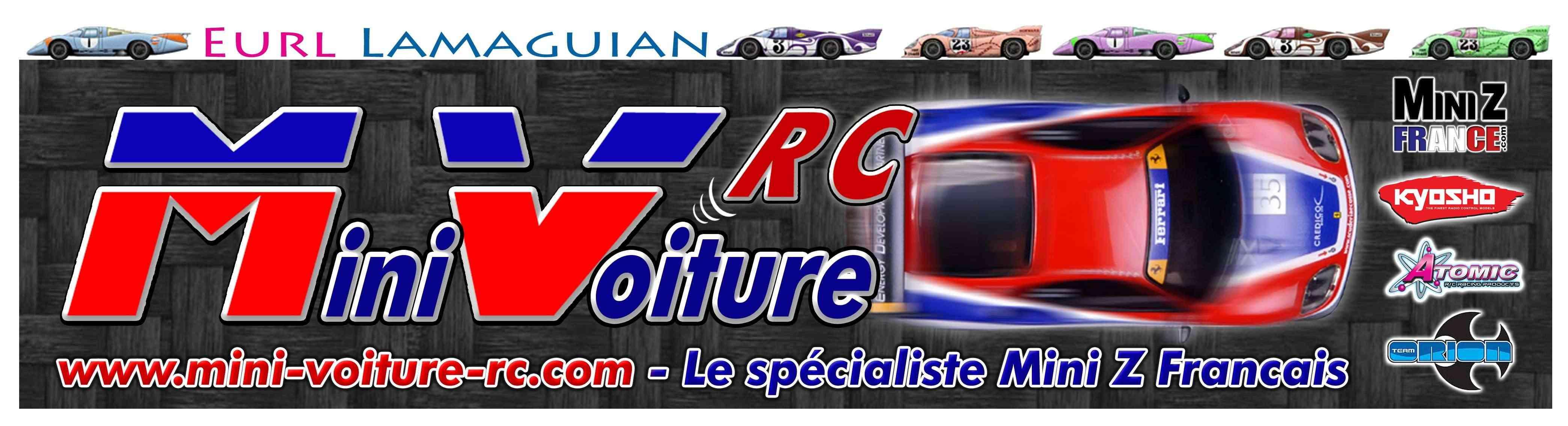 Vote concours de Logo Mini-Voiture-RC Mini_v11