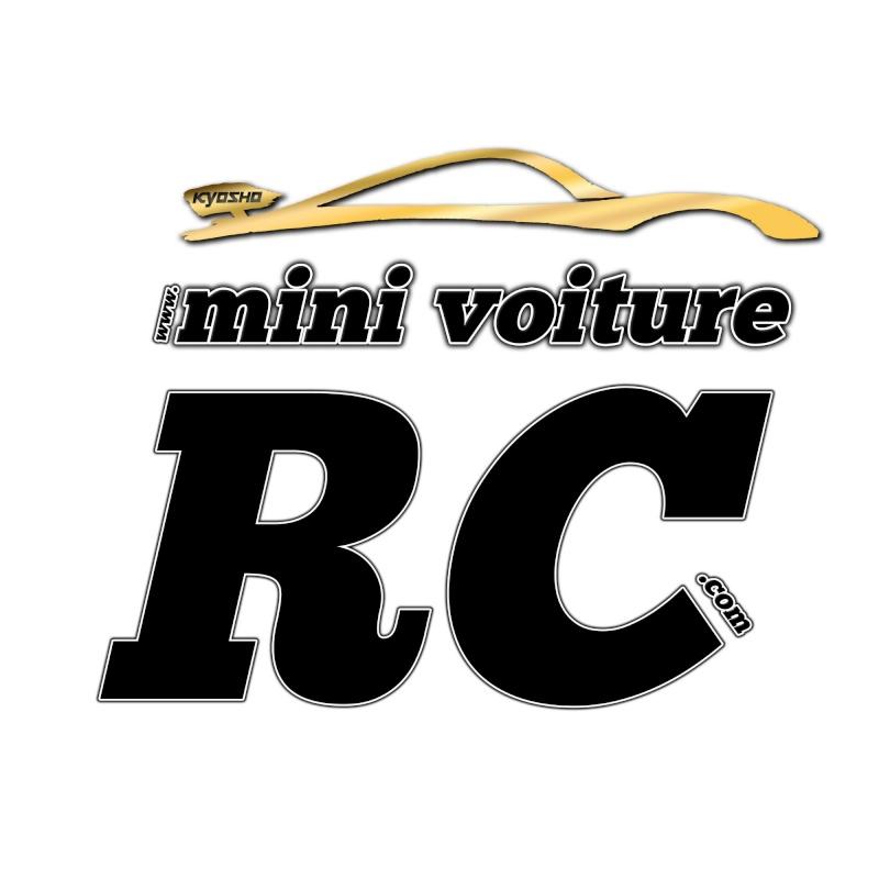Vote concours de Logo Mini-Voiture-RC Mini_v12